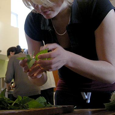 Kochkurse: vegan, vegetarisch oder mit ausgewähltem Biofleisch... von Frühlingskräutern bis Herbstgemüse... von leichter Sommerküche bis deftig wärmenden Wintergerichten...