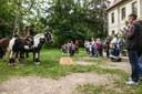 Bereits zum 3. Mal war ganz Quetz zum Tag des offenen Dorfes auf den Beinen, um die Vorzüge des Landlebens zu zeigen und zu feiern!